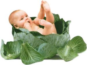 вегетарианство_дети