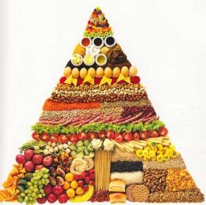 пищевая пирамида картинки