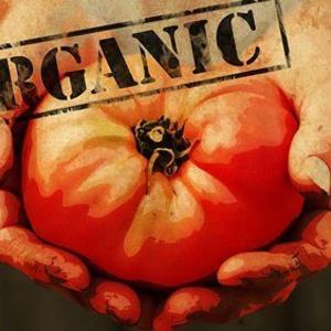 organicheskie_produkty