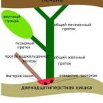 27977-preparat-dlya-lecheniya-pecheni-gepatrin (1)