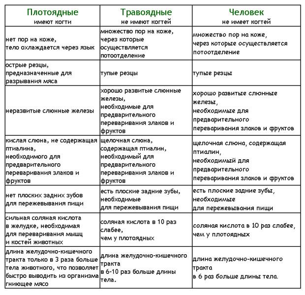 вегетарианство_таблица